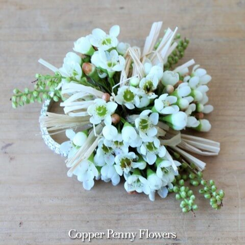 White Waxflower Corsage New From Copper Penny Flowers