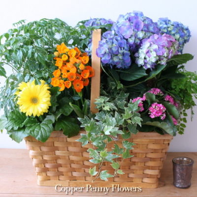 Seasonal Basket Garden