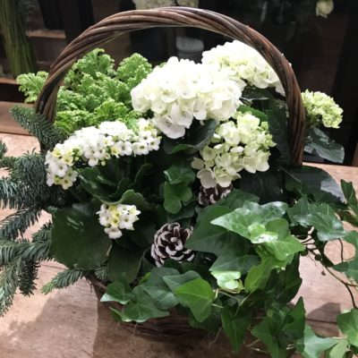 seasonal garden basket featuring green and flowering plants