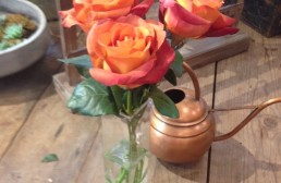 Not Your Grandmother's Roses! Coffee Break