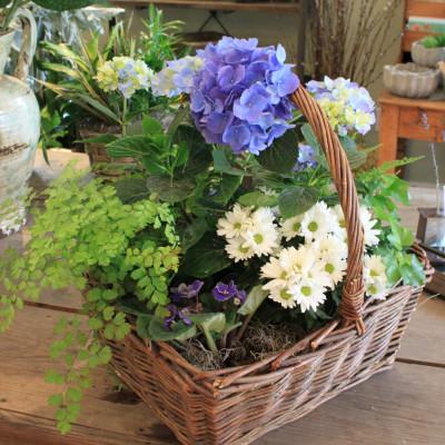 Seasonal Garden Basket